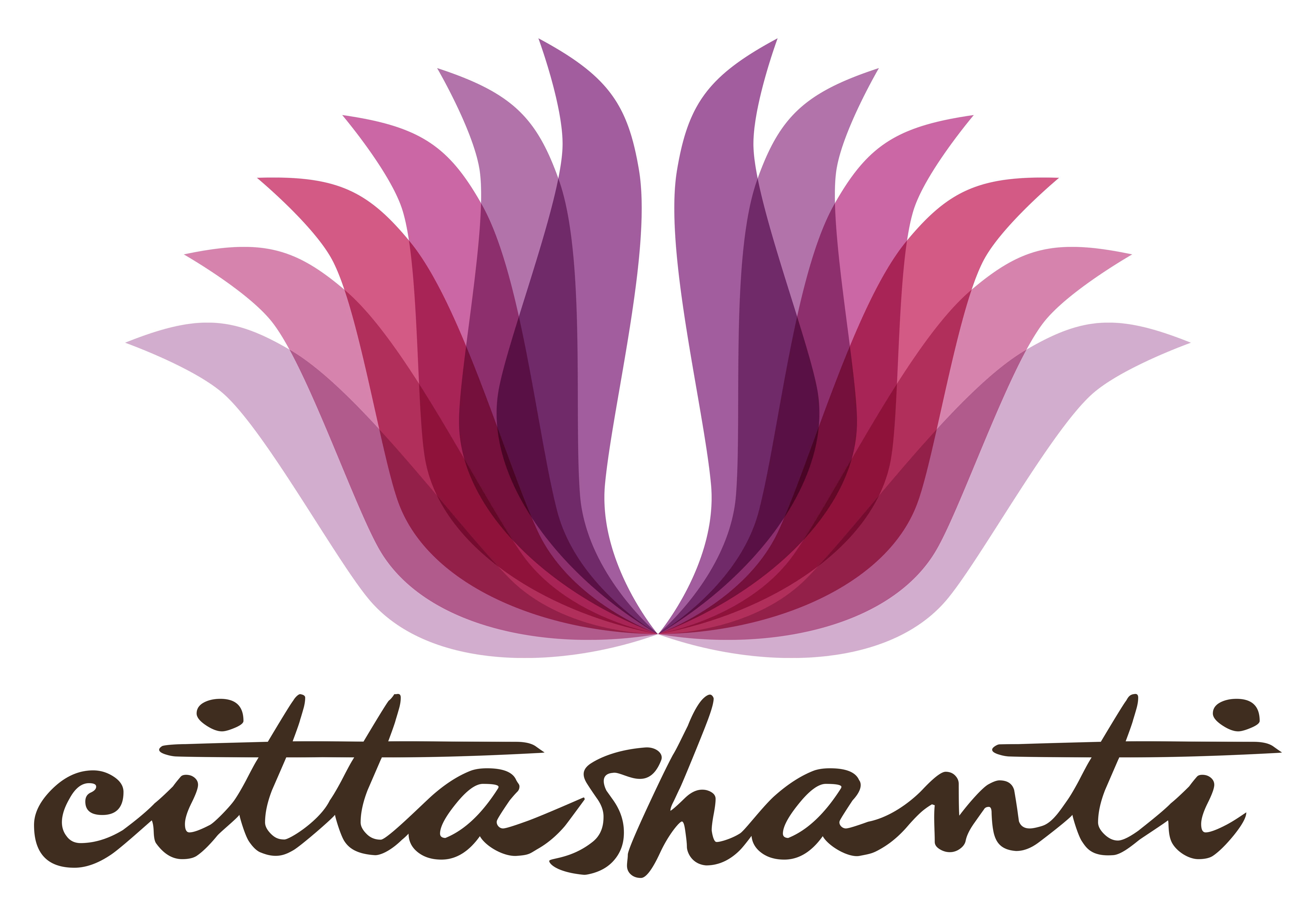 Cittashanti_logo.jpg